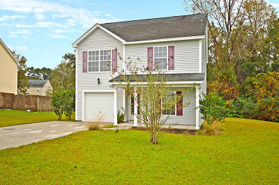 Berkeley County Single Family Home For Sale: 3061 Maple Leaf Drive