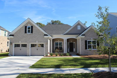 Charleston County Single Family Home For Sale: 821 Foliage Lane