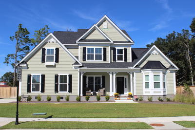 Charleston Single Family Home For Sale: 832 Foliage Lane
