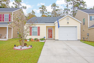 Summerville Single Family Home For Sale: 269 Coosawatchie Street