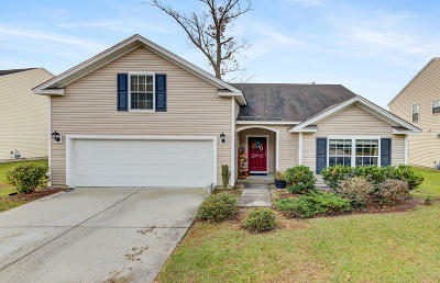 Summerville Single Family Home For Sale: 5079 Timicuan Way