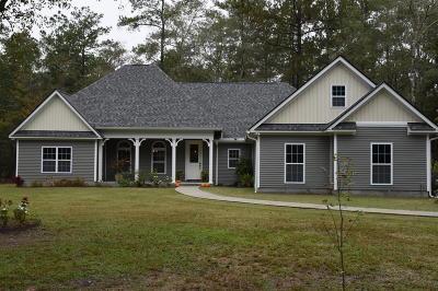 Single Family Home For Sale: 179 Sullivans Landing Road
