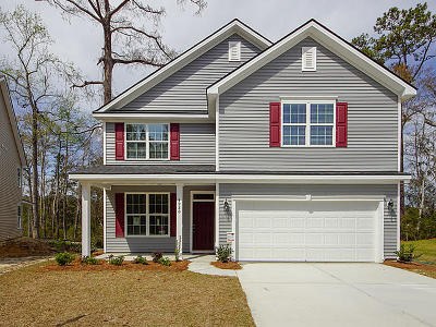 Charleston County Single Family Home For Sale: 4980 Serene Lane #(Lot 35)