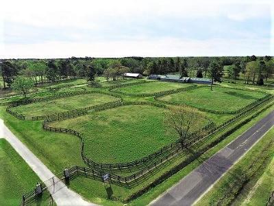 Holly Hill Residential Lots & Land For Sale: 921 Rock Hill Road