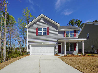 Berkeley County, Charleston County, Colleton County, Dorchester County Single Family Home For Sale: 4968 Serene Lane #(Lot 33)