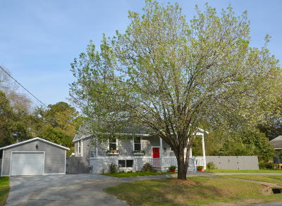 West Ashley Plantation Single Family Home For Sale: 1843 Debbenshire Drive
