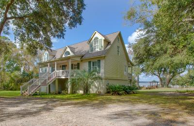 Wadmalaw Island Single Family Home For Sale: 1069 Harts Bluff Road