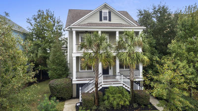 Daniel Island Single Family Home For Sale: 1410 Wando View Street