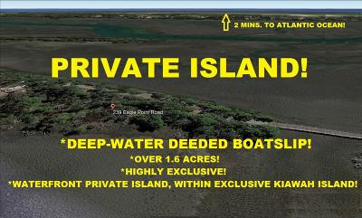Kiawah Island Residential Lots & Land For Sale: 239 Eagle Point Road
