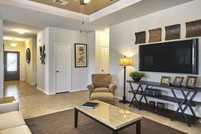 Summerville Single Family Home For Sale: 477 Sanctuary Park Drive