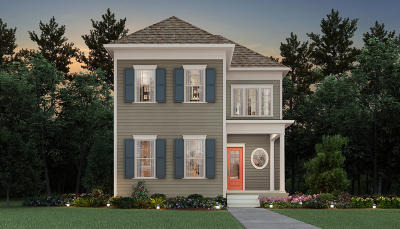 Charleston Single Family Home For Sale: 2573 Daniel Island Drive