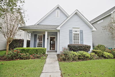 Summerville Single Family Home For Sale: 209 Dandelion Street