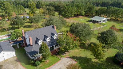 Moncks Corner Single Family Home For Sale: 1068 Witherbee Road