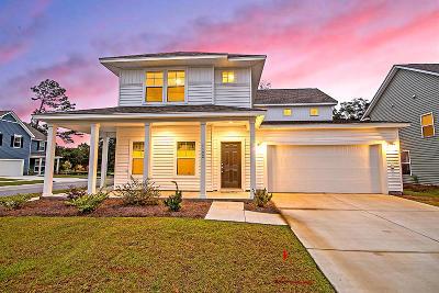 Johns Island Single Family Home For Sale: 1102 Turkey Trot Drive