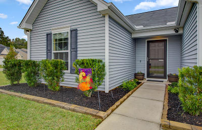 Summerville Single Family Home For Sale: 6024 Snead Lane