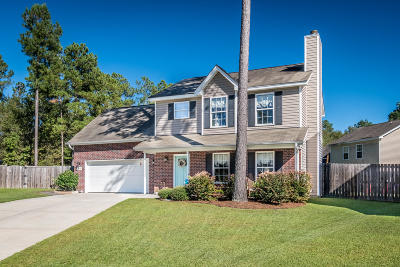 Summerville Single Family Home For Sale: 414 Meadowview Trail Trail