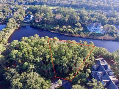 Charleston County Residential Lots & Land For Sale: 203 Horned Grebe Court