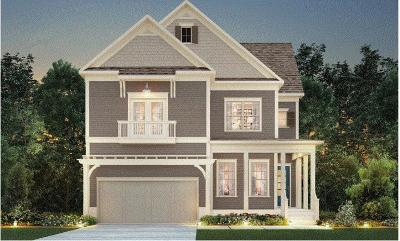 Mount Pleasant SC Single Family Home For Sale: $539,485
