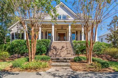 Charleston Single Family Home Contingent: 316 Ralston Creek Street