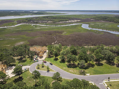 Berkeley County, Charleston County Residential Lots & Land For Sale: 161 Nobels Point Street