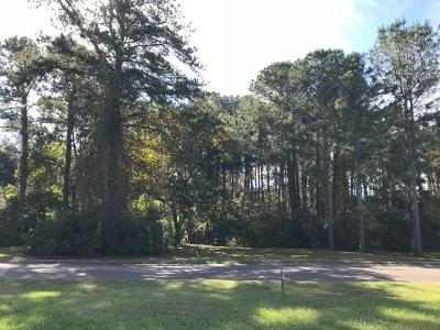Seabrook Island Residential Lots & Land For Sale: B 20 Seabrook Village Dr.