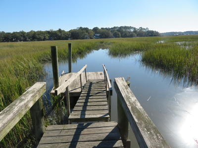 Edisto Island SC Residential Lots & Land For Sale: $150,000