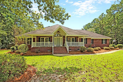 Summerville Single Family Home For Sale: 310 Picadilly Loop