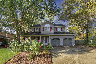 Goose Creek Single Family Home For Sale: 109 Dominion Circle
