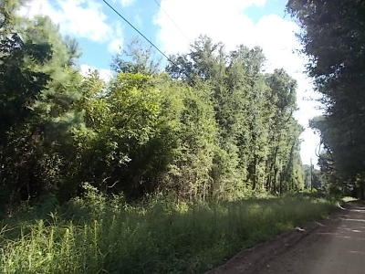 Wadmalaw Island Residential Lots & Land For Sale: Slim Road