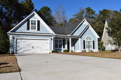 North Charleston Single Family Home For Sale: 8536 Sentry Circle