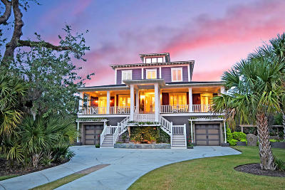 Mount Pleasant Single Family Home For Sale: 210 Island Point Court