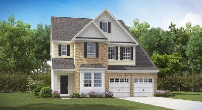 Single Family Home For Sale: 1112 Sapling Drive