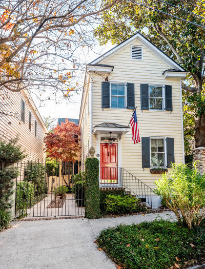 Charleston Single Family Home For Sale: 17 Elizabeth Street