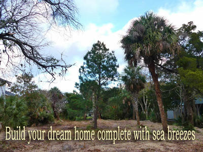 Edisto Island SC Residential Lots & Land For Sale: $219,000