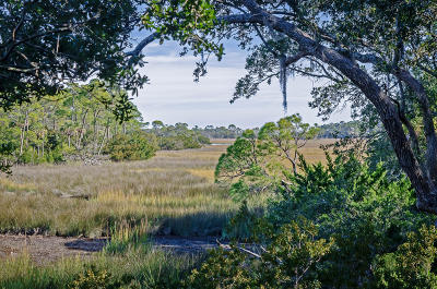 Kiawah Island Single Family Home For Sale: 24 Marsh Cottage Lane
