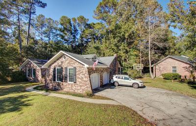 Single Family Home For Sale: 225 Pointer Drive