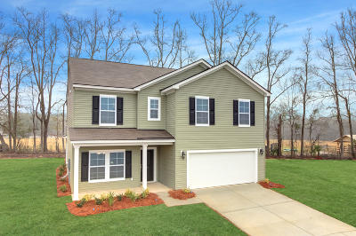 Dorchester County Single Family Home For Sale: 72 Pavilion Street
