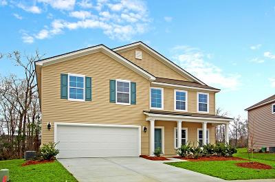 Single Family Home For Sale: 45 Pavilion Street