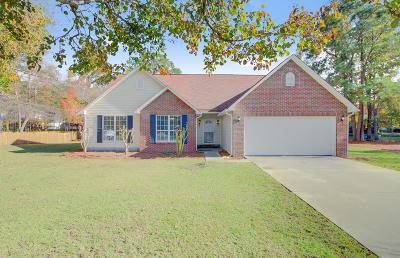 Single Family Home For Sale: 232 Lipman Street