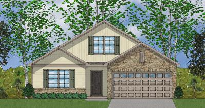 Goose Creek Single Family Home For Sale: 117 Clydesdale Circle