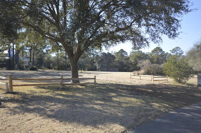 Johns Island Residential Lots & Land For Sale: Plantation Pointe Road #Lot 20