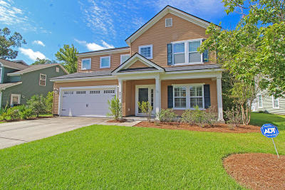North Charleston Single Family Home For Sale: 8417 Taylor Plantation Road