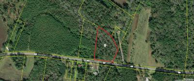 Residential Lots & Land For Sale: 217 Sunrise Road