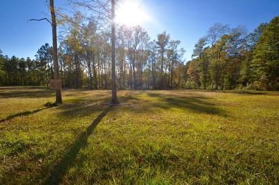 Residential Lots & Land For Sale: Cypress Pointe Drive