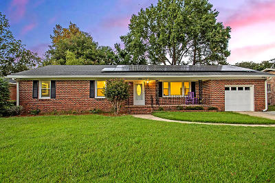 Charleston Single Family Home For Sale: 1390 White Drive