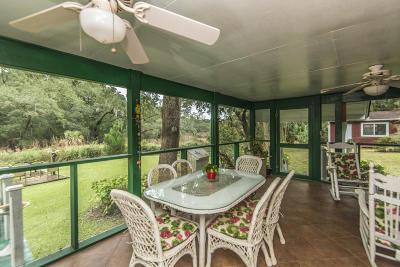 Wadmalaw Island Single Family Home For Sale: 7033 Maybank Highway