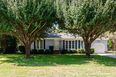 Charleston Single Family Home For Sale: 1063 Renwood Drive