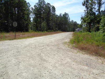 Awendaw Residential Lots & Land For Sale: Lot 20 Bridle Gate Lane