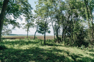 Residential Lots & Land For Sale: River Bend Drive