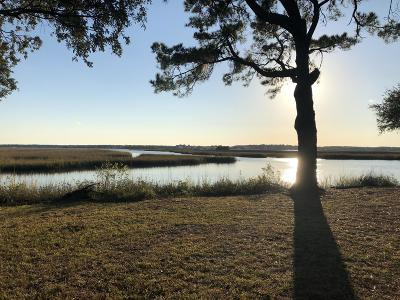 Charleston County Residential Lots & Land For Sale: Shady Lane
